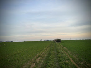 Photo: Trouville, chemin du Cheval Blanc