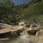 Cool stream among heat