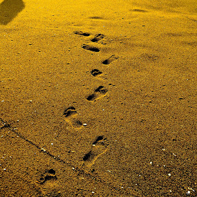 footprints lost in time by Deepak Prabhu - People Fine Art