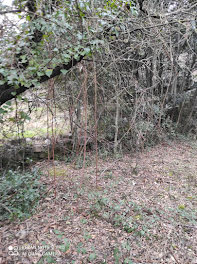 terrain à Saint-Martin-de-Valgalgues (30)