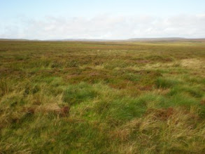 Photo: PW - From Tan Hill to Middleton in Teesdale: over Sleightholme Moor