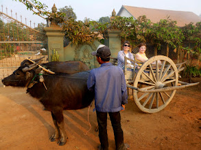 Photo: When we returned to land, we had a water buffalo cart ride back to our bus.