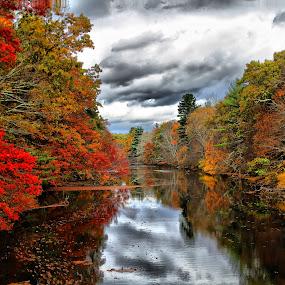 by Susan Hogan - Landscapes Waterscapes (  )