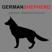 German Shepherd & Dog Barking