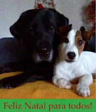 Photo: Picles & Friend- TETA
