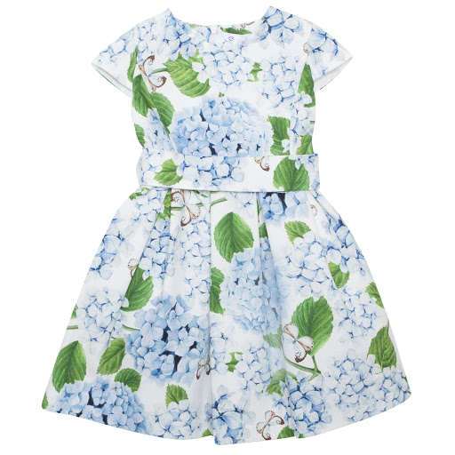Primary image of Special Day Hydrangeas & Butterfly Dress