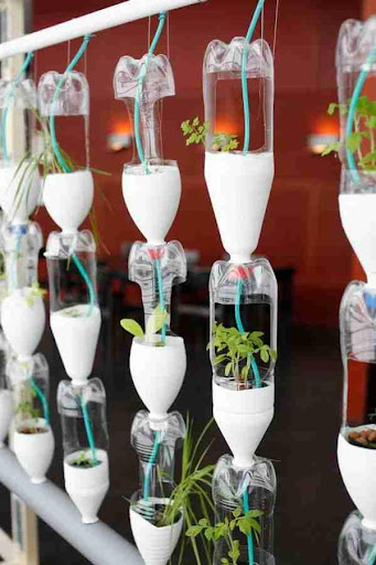 Window Planter Box Ideas