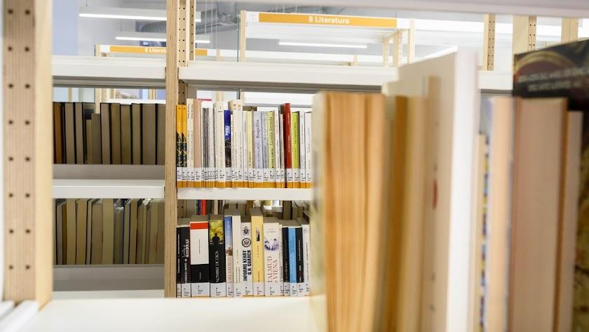La Biblioteca reabre hoy su sala de consulta.