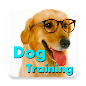 Dog Training Language