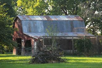 Photo: Pruning Prathersville, Mo.