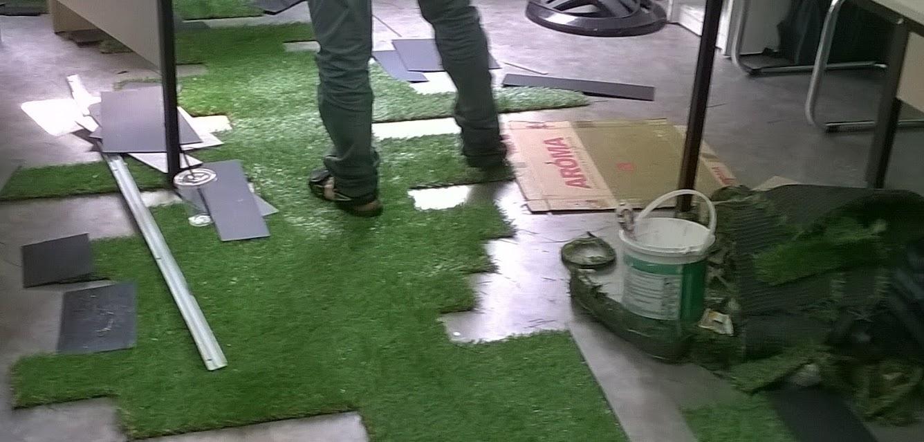 Bình Phước để tâm hơn sản phẩm cỏ sân vườn giá rẻ 2018
