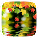 Maple Leaves for Samsung icon
