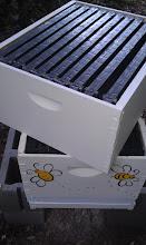 Photo: adding second brood box