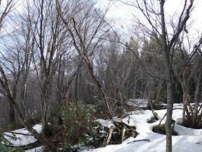 雪を繋いで進む