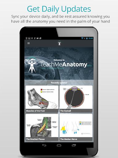 Teach Me Anatomy  screenshots 14