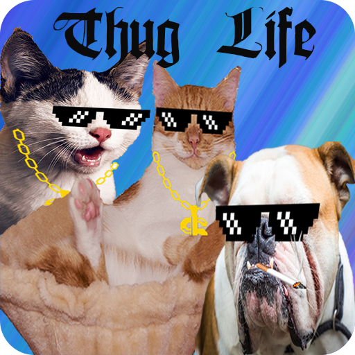 Stickers For WhatsApp(Thug Life) Android APK Download Free By CrunchCodes