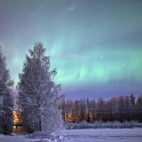 Aurora moment by Elisabeth Johansson - Landscapes Weather ( sweden, norrbotten, boden, night photography, northern lights, aurora borealis, winterphoto, evening, light, skyscape )