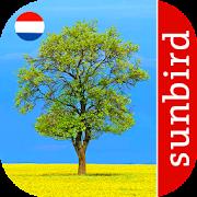 App Icon for Boom Id - Bomen van Europa App in Czech Republic Google Play Store