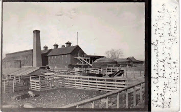 Photo: Walter's Tile and Stockyards - 1908