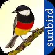 App Icon for All Birds Germany - A Sunbird Field Guide App in Czech Republic Google Play Store