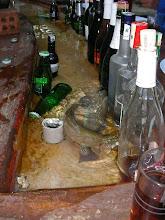 Photo: Kahvaltı - Saat: 06.00 - Alabalıkla kedi gibi seviliyor. Tlos Yakapark - Kalkan - 17.04.2010