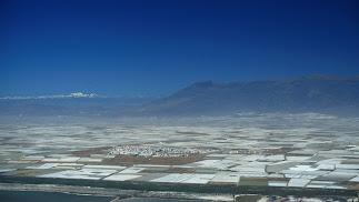 El Campo de Dalías acumula en torno a 20.000 hectáreas de invernaderos