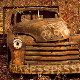 WARNING by Jennifer  Loper  - Transportation Other ( rust, old, truck, sign, paint, skull )