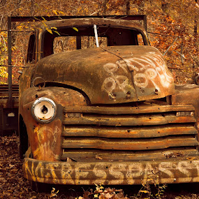 WARNING by Jennifer  Loper  - Transportation Other ( rust, old, truck, sign, paint, skull )