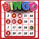 Bingo - Offline Free