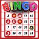 Bingo - Offline Free Android apk