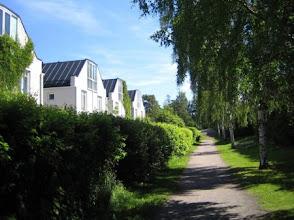 Photo: Vehreyttä 2005