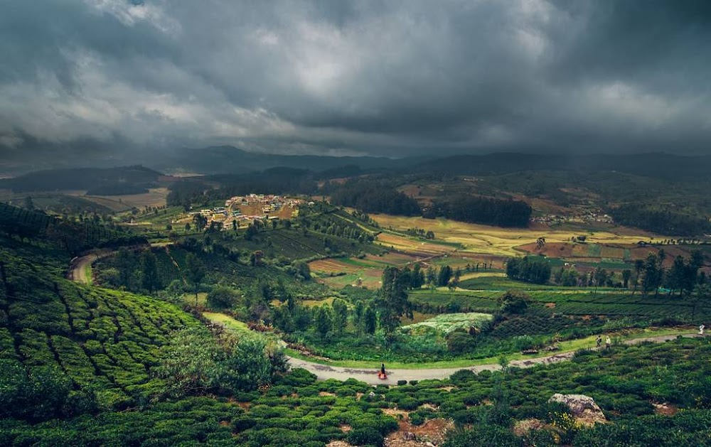 ooty-places-to-visit-near-bangalore_image