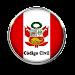 Codigo Civil Peruano Icon