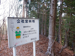 公社営林地