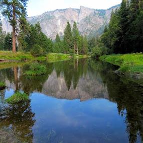 Reflection on Merced River by Janet Martinez - Novices Only Landscapes ( yosemite )