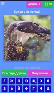 Викторина Птицы России - náhled