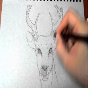 ho kreslit zvíře - náhled
