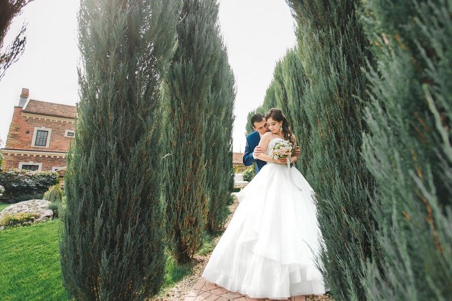 Fotografer pernikahan Viktor Panchenko (viktorpan). Foto tanggal 12.01.2017