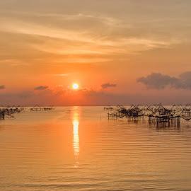 Web of Nets by Vijay Tripathi - Landscapes Sunsets & Sunrises ( sunrises, waterscape, sunsets, boats, nets, prawns )