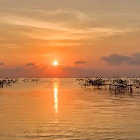 Web of Nets by Vijay Tripathi - Landscapes Sunsets & Sunrises ( sunrises, waterscape, sunsets, boats, nets, prawns,  )