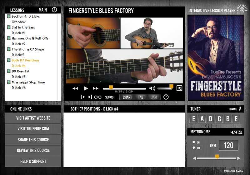 David Hamburger - Fingerstyle Blues Factory
