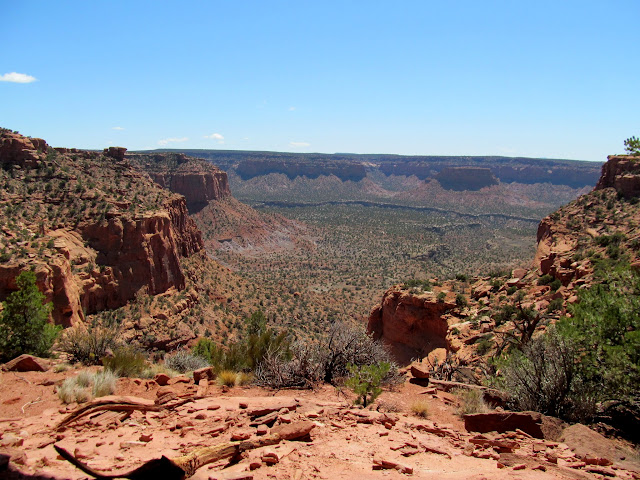 South Fork of Happy Canyon