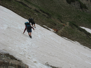 Photo: Maroon Bells - mother, daughter, 2 dogs