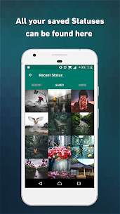 Status Saver Status Downloader App Download For Android and iPhone 8