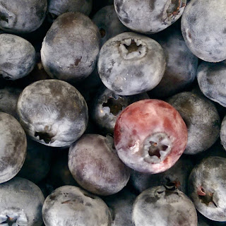 Blueberry Apricot Preserves