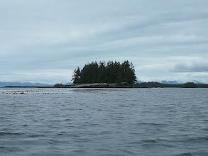 Photo: An island in Foggy Bay.