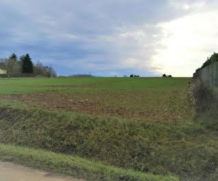 terrain à Bussy-en-Othe (89)