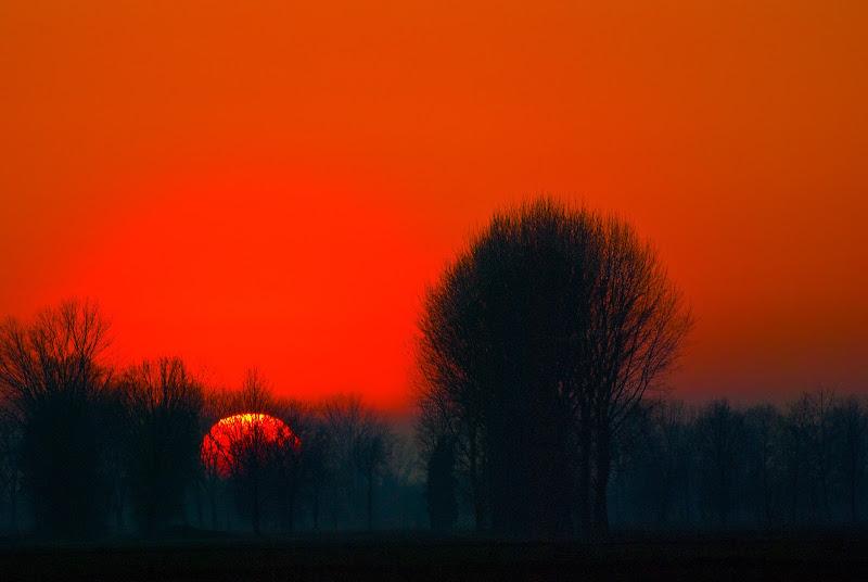 Sole incendiario di Daimon