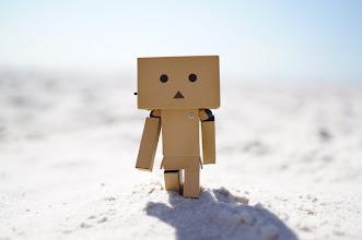 Photo: #Danbo walking in desertlike beach