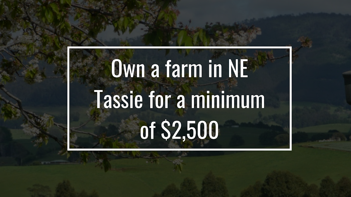Own a farm in NE Tassie for a minimum of $2,500